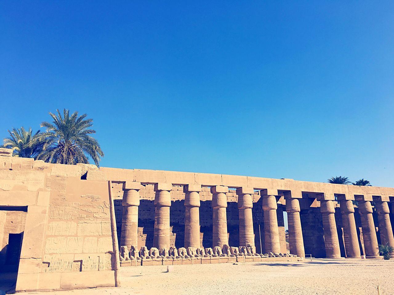 Ancient Culture ⚱️🏺 Luxor Karnak Temple Egypt Ägypten  RedSea Reisen Ancient Culture DOPE Pharaoh Temple Tempel Karnak Karnaktemple Globetrotter Travel Traveling Reise Aroundtheworld Vacations Vacation Destination Vacation Time Vacation Arabic египет
