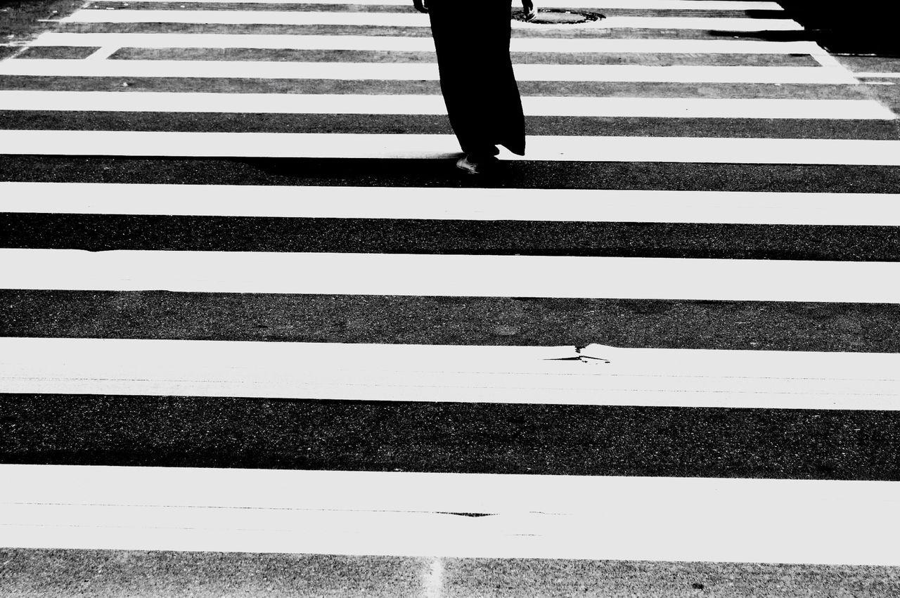 Beautiful stock photos of zebra, Berlin, Crossing, Day, Germany