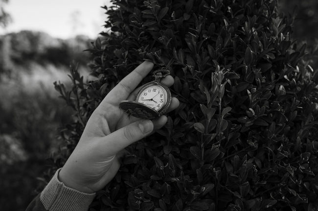 Time grows on trees Alice In Wonderland Alone Balance Black And White Childhood Close Up Close-up Depth Of Field Detail Focus On Foreground Fragility Holding Human Body Part Human Finger Human Hand Individuality Monochrome Outdoors Part Of Pocket Watch Selective Focus Surrealism The Story Behind The Picture Time Watch