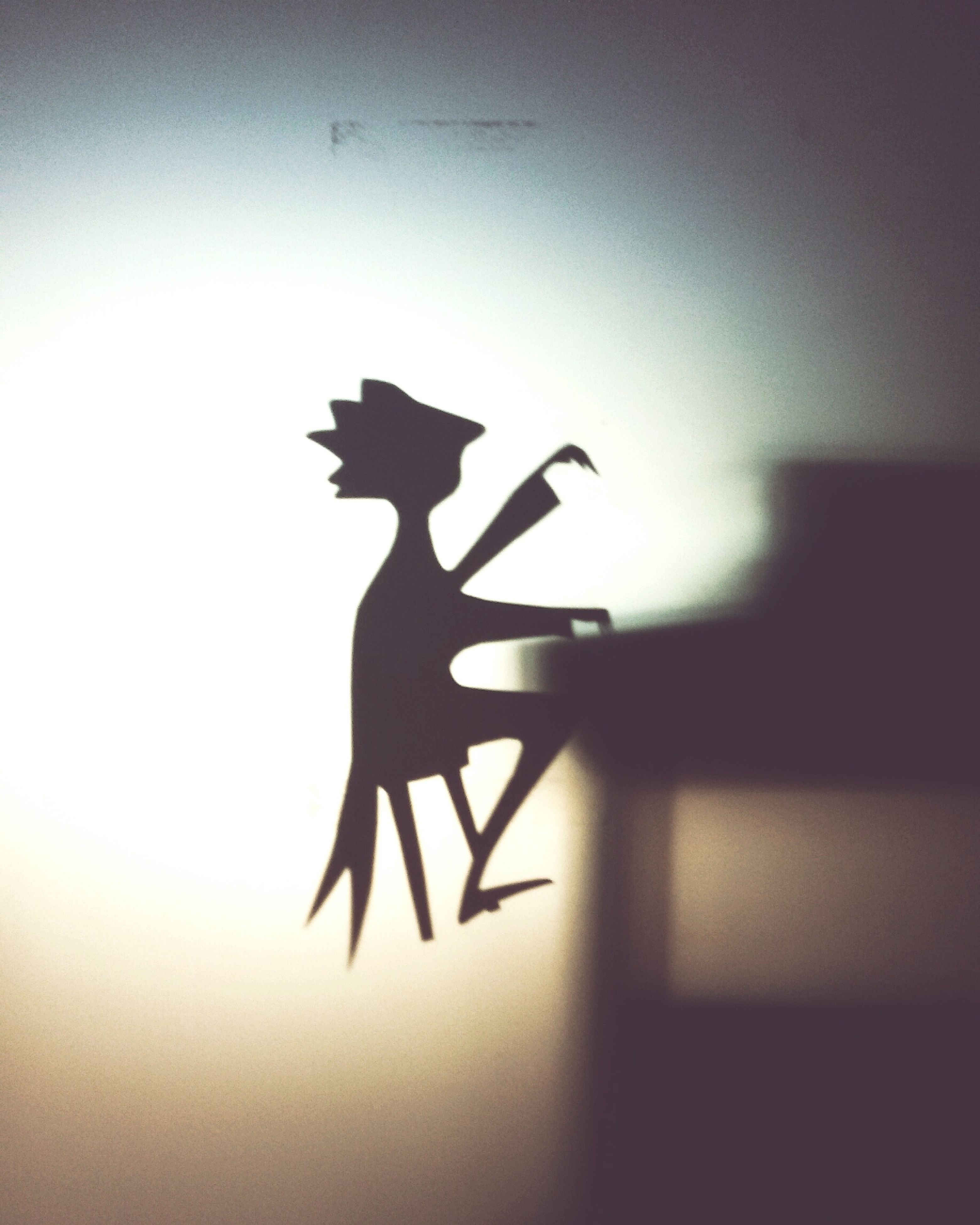 silhouette, animal representation, selective focus, outline, focus on foreground, zoology, no people, man made object