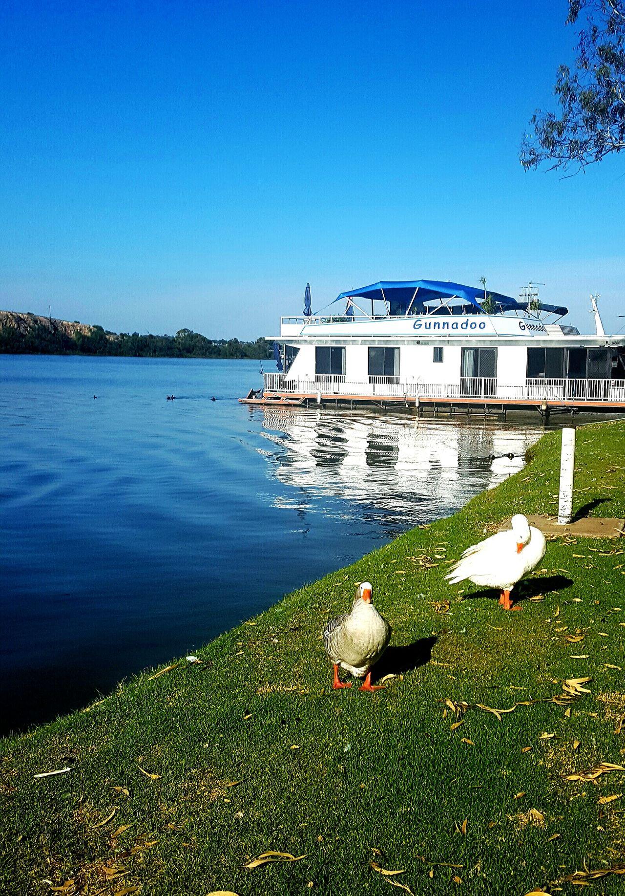 Murray river south australia Murray River House Boat River South Australia