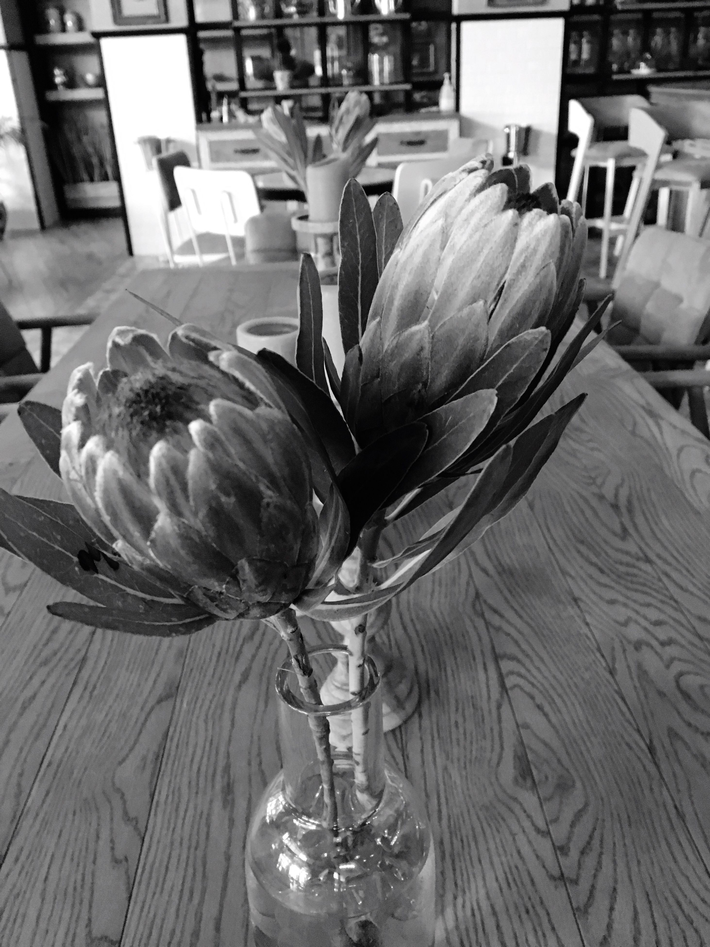 flower, vase, indoors, table, freshness, no people, close-up, bouquet, flower head, food, nature, day, fragility
