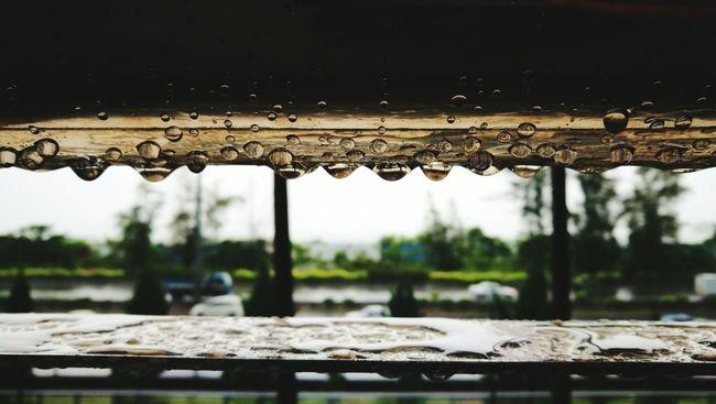 Water Wet Drop Rain Weathered Nature