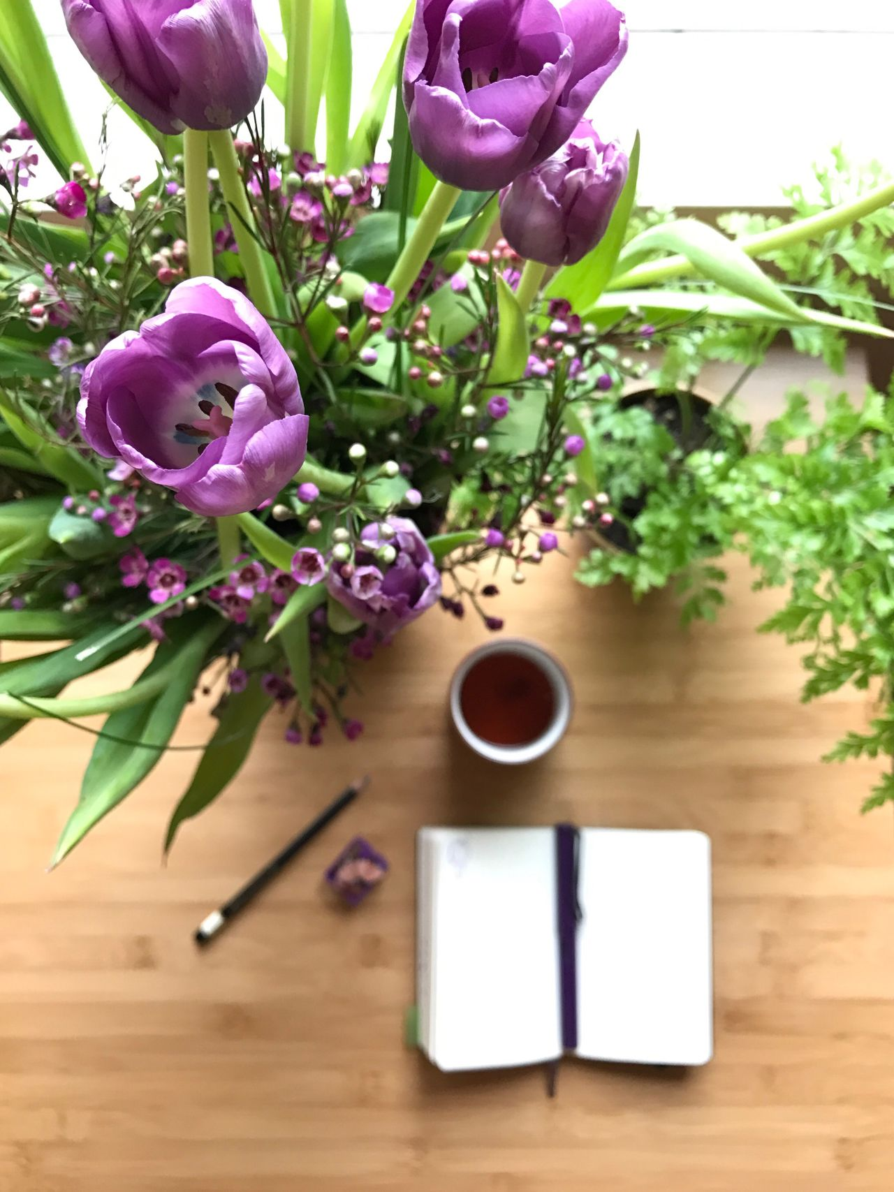 Flower No People Freshness Leaf Plant Nature Tulip Close-up Indoors  Fragility Day Beauty In Nature Flower Head Journal Writing Notebook On The Table