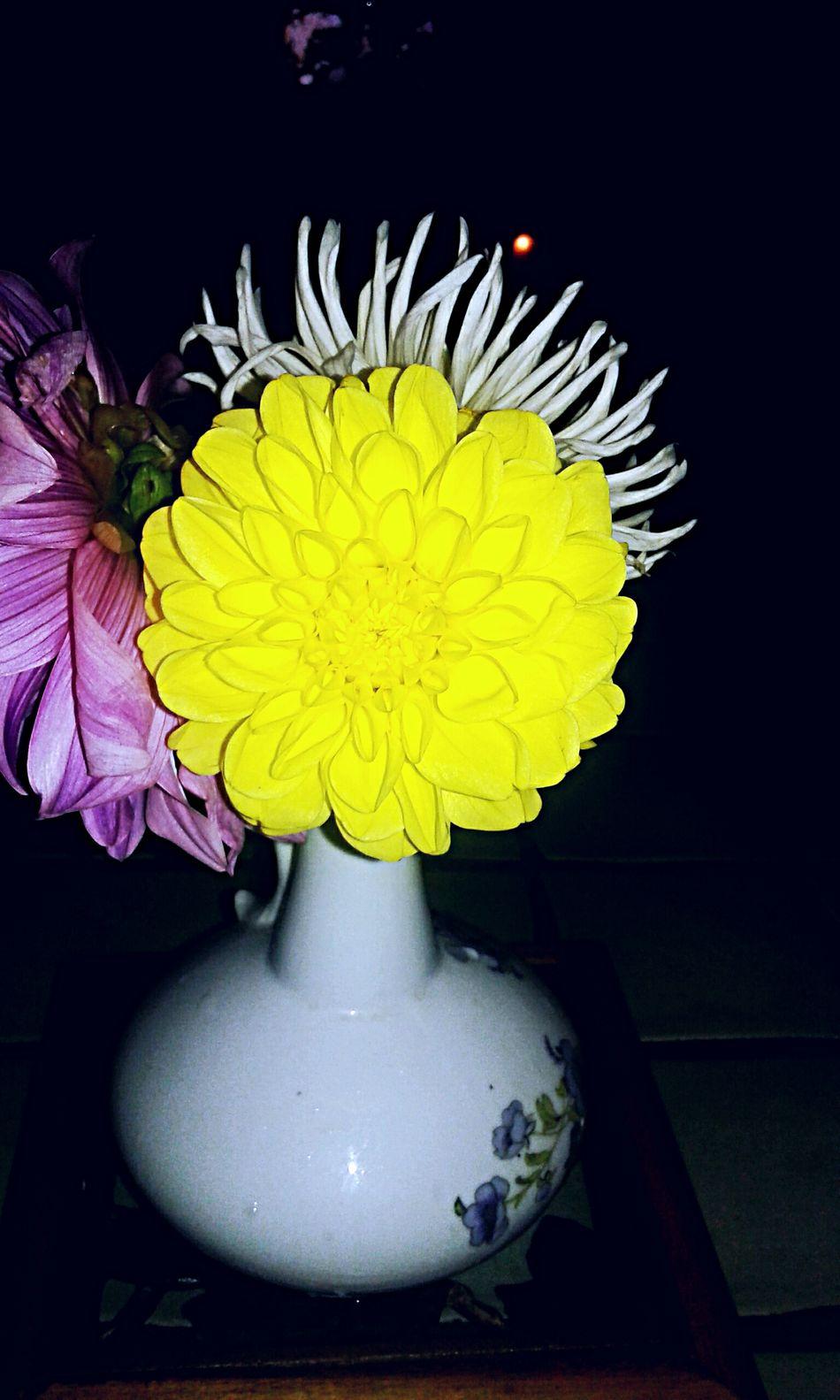 Lovely summer 😍 Lovelysummerday Flowers LoveFlowers🌸 Time To Relex Chilling Time