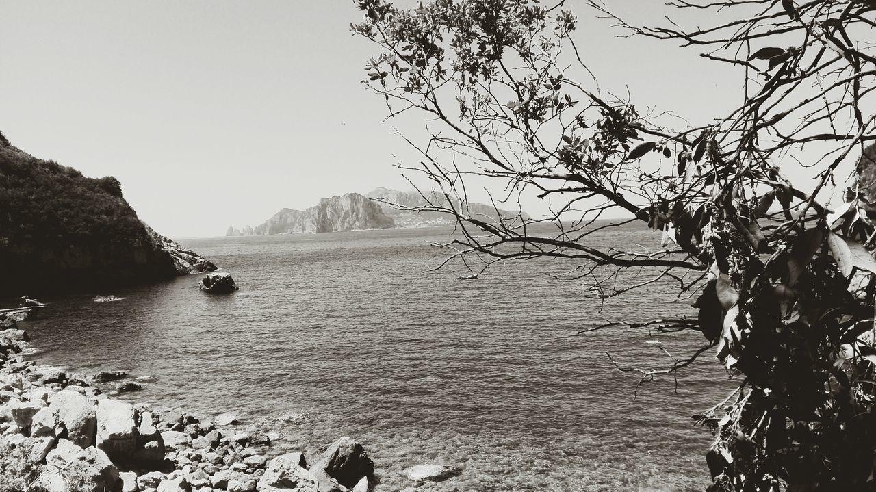 Punta campanella vista capri mare Tree Travel Destinations