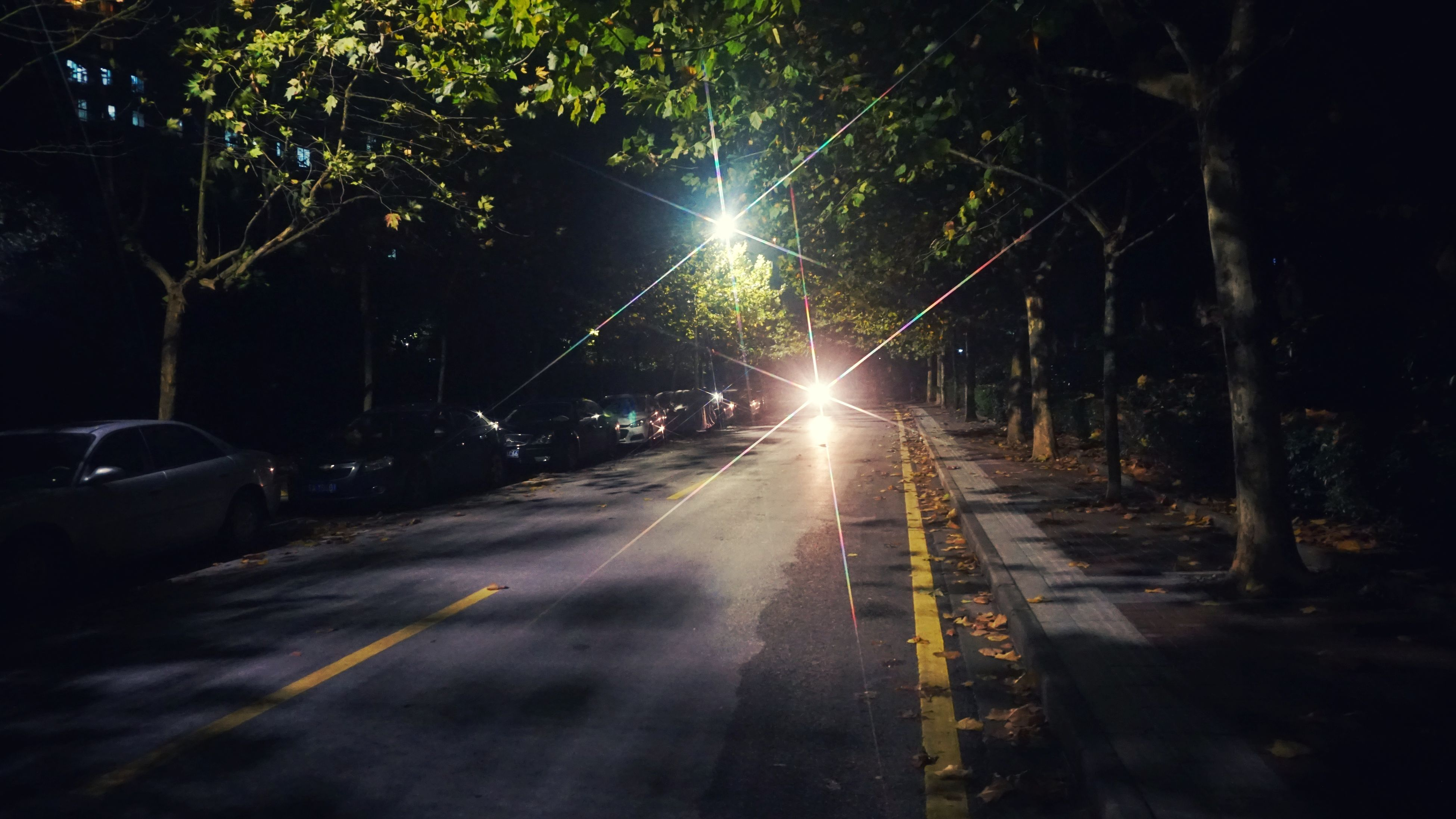 illuminated, night, street, tree, street light, road, no people, city, transportation, the way forward, outdoors, nature