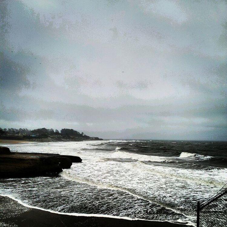 Santacruz Thecove Beach Ocean