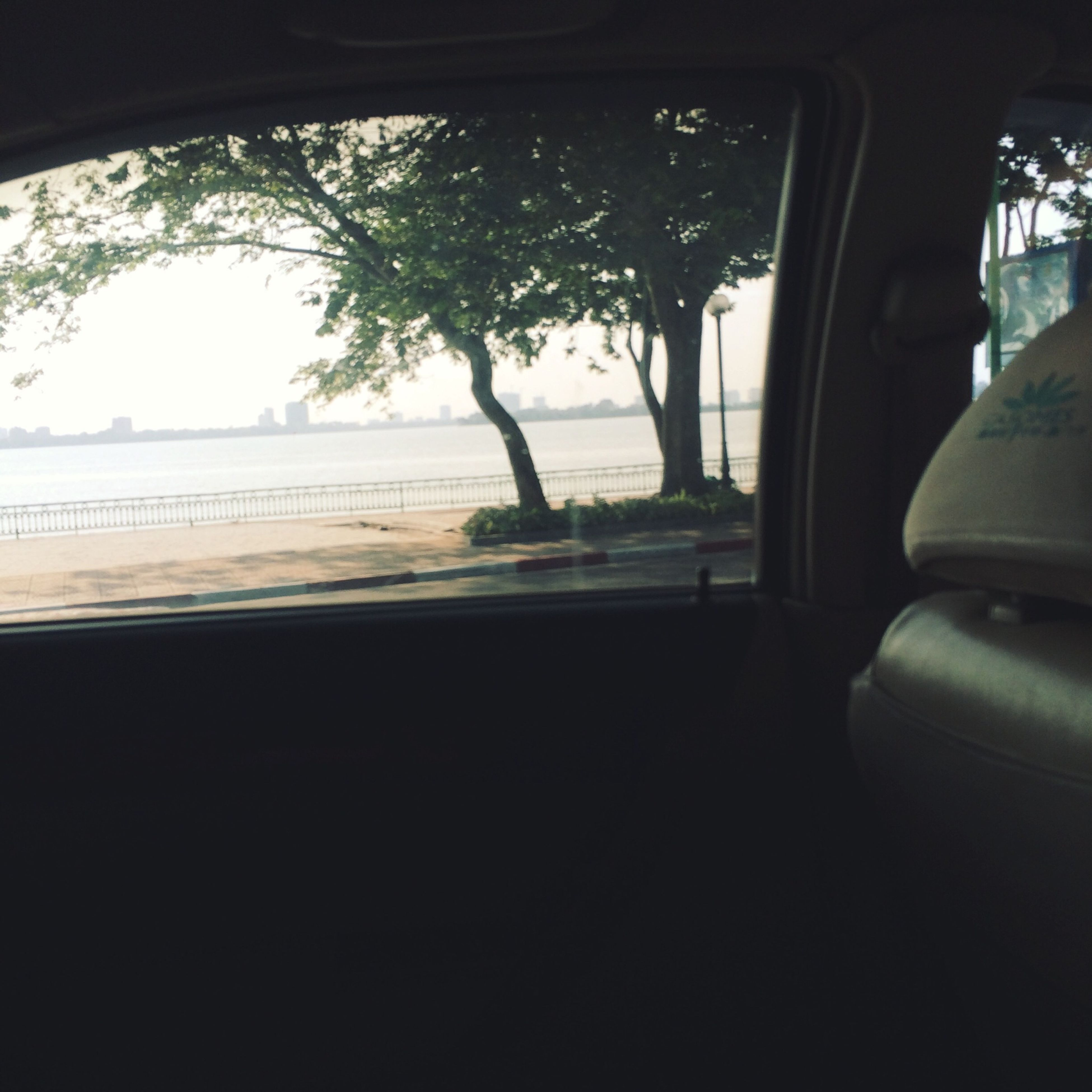 window, transportation, mode of transport, vehicle interior, glass - material, car, indoors, land vehicle, transparent, tree, looking through window, sky, travel, sunlight, windshield, car interior, road, day, no people, reflection