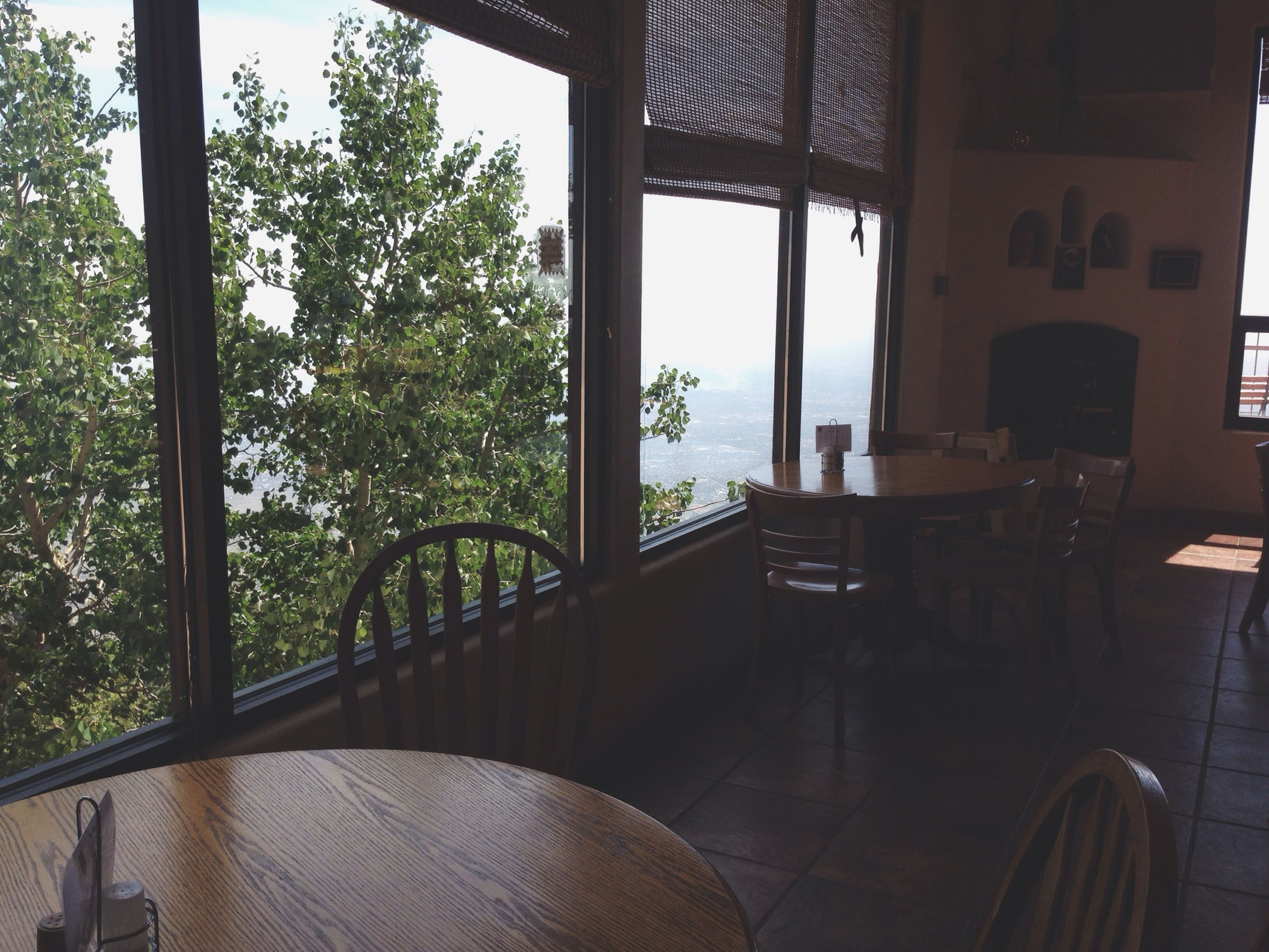 indoors, chair, window, table, absence, empty, tree, home interior, built structure, sunlight, glass - material, architecture, potted plant, seat, transparent, house, day, restaurant, no people, furniture