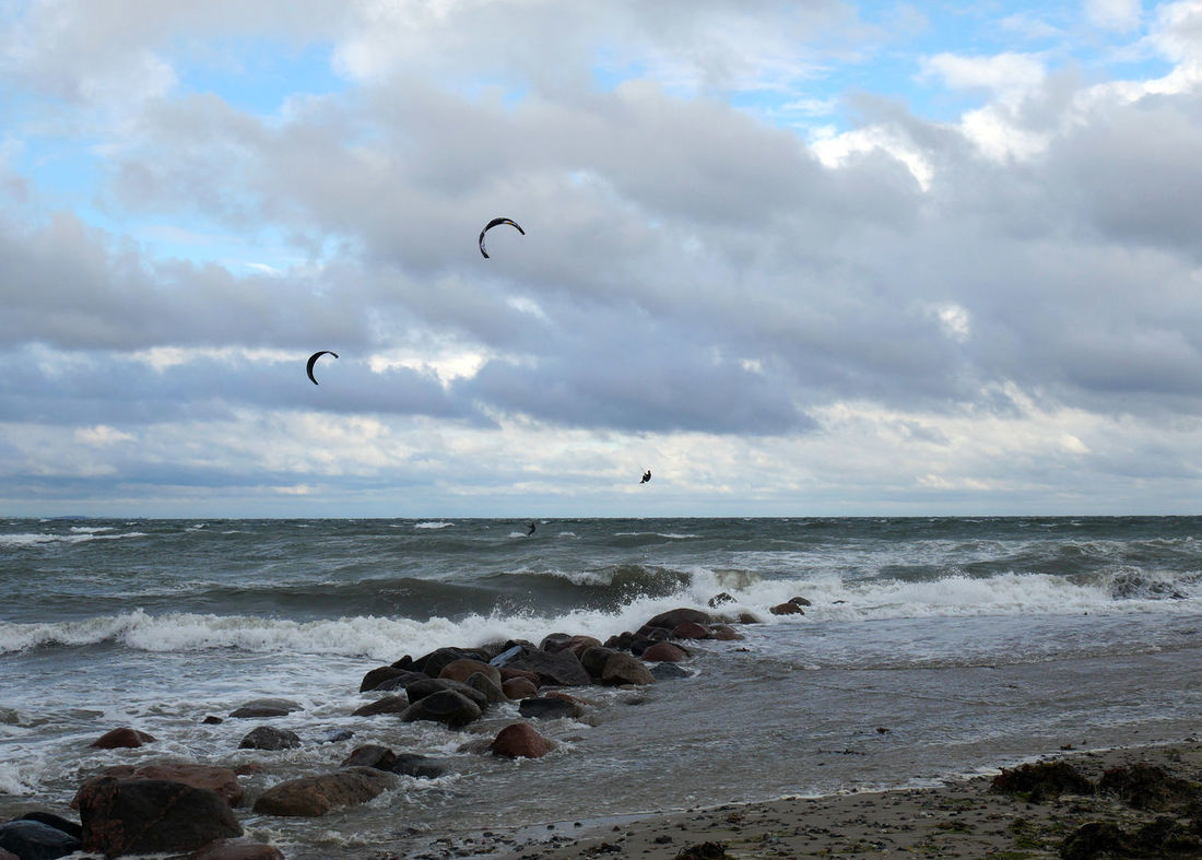 Action Animal Themes Baltic Sea Beach Bird Cloud - Sky Flying Horizon Over Water Kite Kiteboarding Kitesurf Kitesurfer Kitesurfing Ostsee Scenics Sea Shore Sky Sport Surfing Tranquil Scene Tranquility Water Wave Wind