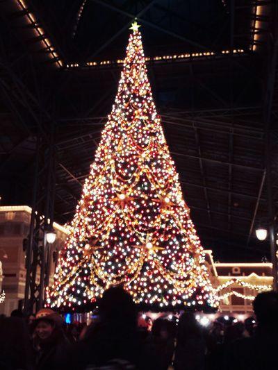 Disneyland X'mas Enjoying Life Beautiful ♥