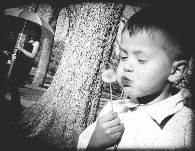 Showcase April Relaxing Dandelion Dandelions Dandelionfluff Dandelion Collection Make A Wish Make A Wish ! Make A Wish<3 Nephew  Nephew ♡ Cutenessoverload Nephew ♥ Tulsa, Oklahoma Tulsa,oklahoma Tulsa, OK The Portraitist - 2016 EyeEm Awards Home Is Where The Art Is