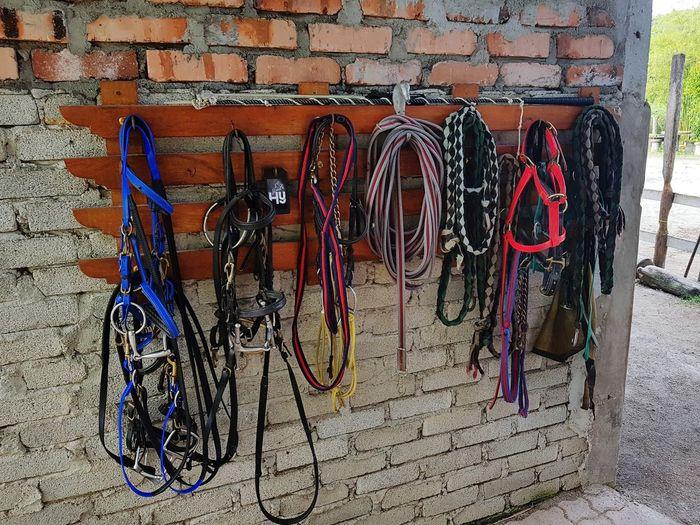 horsemanship equeipment Horseback Riding Horsemanship Bridel Mode Of Transport Transportation Stationary Outdoors No People