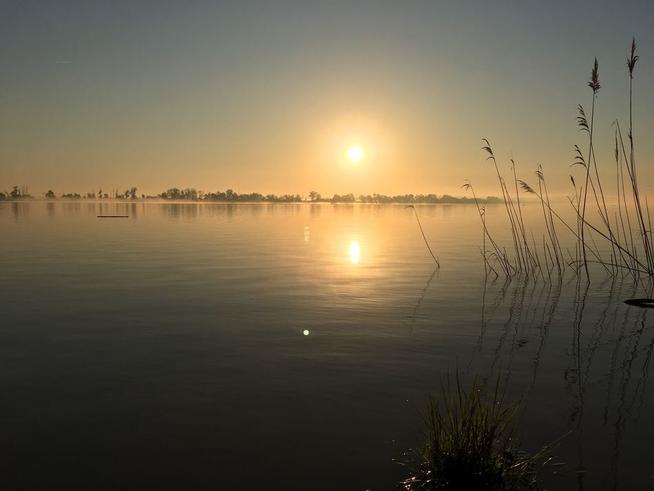 Sunrise in the fog Sun Water Nature Beauty In Nature Outdoors 12MP HDR