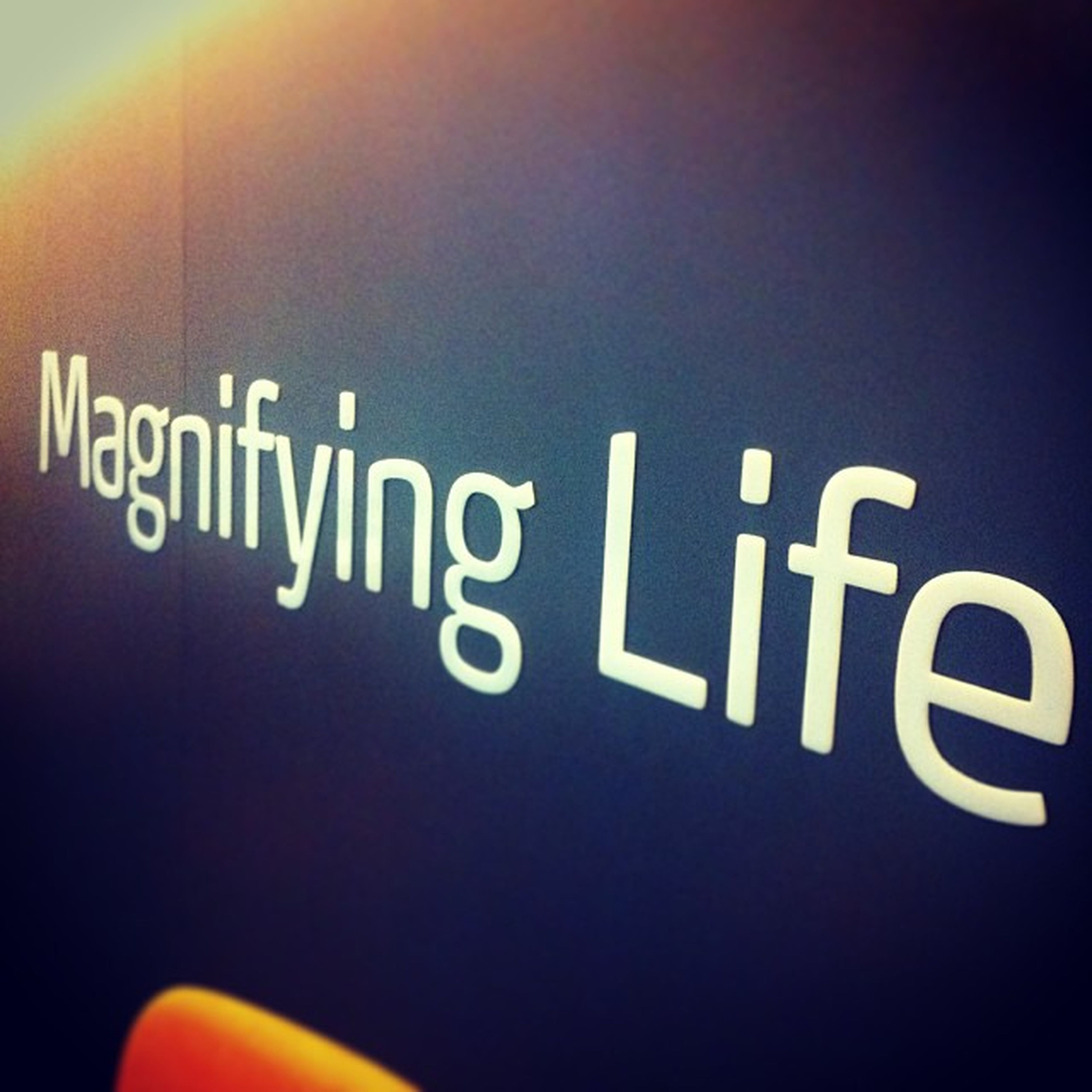 Magnifyinglife Zumstar Office 3play