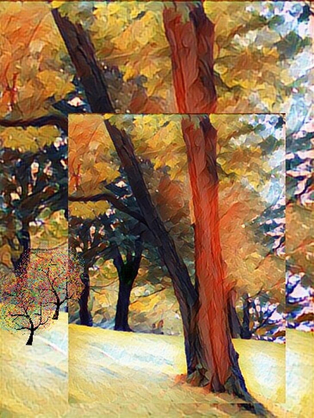 Abstract Trees in Autumn. Autumn Leaf Change Multi Colored Tree No People Outdoors Beauty In Nature fall. Mother Nature. Art. Wall Picture.
