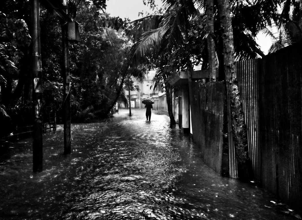 The Rainy Day. Tree Full Length People Outdoors Real People Built Structure Architecture Building Exterior Day Light And Shadow Black And White Black & White Light And Shadow Outdoor Photography Full Frame Lifestyles Pattern Pieces Imagination And Creative Street Photography EyeEm Selects Architecture Black&white The Street Photographer - 2017 EyeEm Awards One Man Only Minimal Composition One Person Breathing Space Breathing Space EyeEmNewHere EyeEm LOST IN London