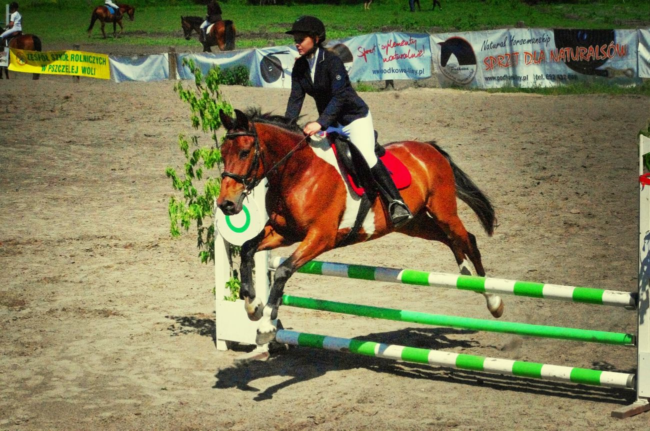 Horse Show Horse Jumping Horse Riding Horse Life