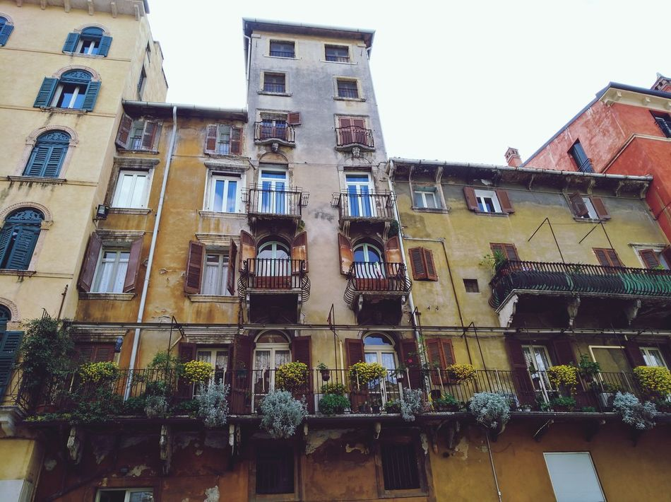 Building Exterior Architecture Built Structure Low Angle View City Façade We Are Photography, We Are EyeEm We Are Eyeem, We Are Photography Verona Verona Italy Looking Up