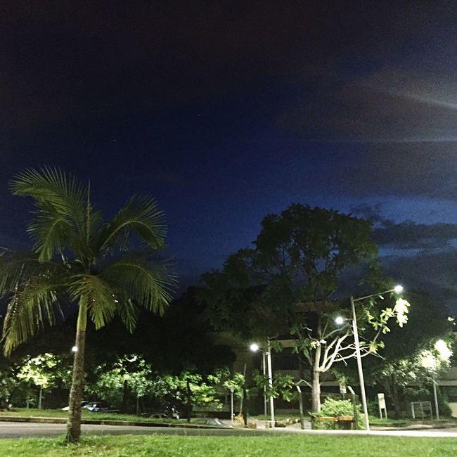 50tonsdeblue Nightsky São Paulo