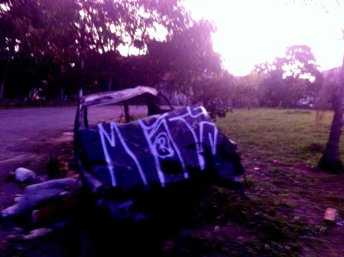 Paisagismo! Cidadecinza Vandal Vandalized Relaxing Hello World Vandalism