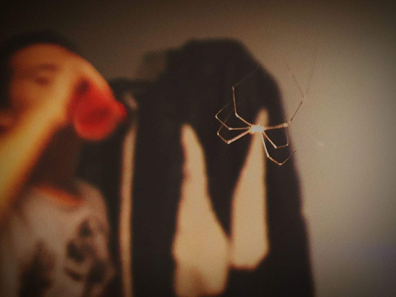 And you still wonder how to become spider-man ? Real People People One Person Spider Spiderman Spiderworld Spiders Spiders In My Room Spiders Are Cool Adult Adults Only Only Men Day Outdoors Participant