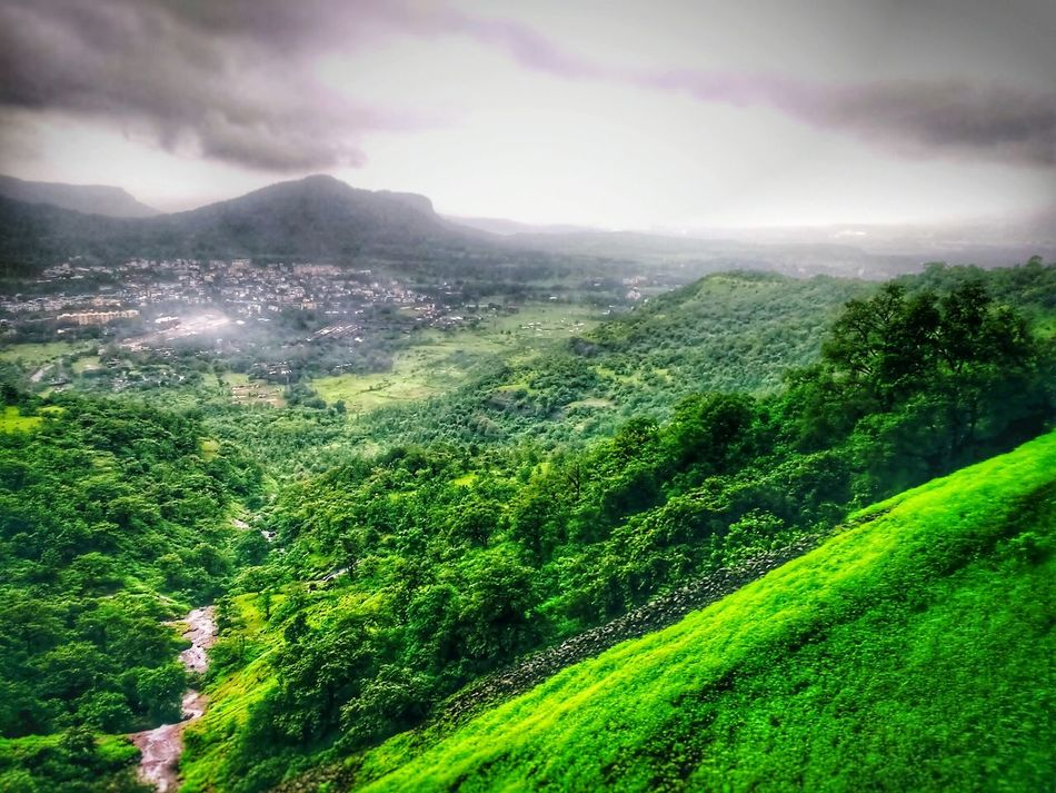 Back after a long time... Landscape Nature Beauty In Nature Rural Scene Green Color Awe Cloud - Sky Forest Tree Agriculture Freshness Taking Pictures Taking Photos Hdr_Collection HDR Composition Style Of Photography Back After A Long Time Back At It Again