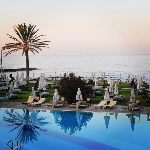 Sea Swimming Pool Palm Tree Water Vacations Outdoors Clear Sky Beach Horizon Over Water Infinity Pool No People Sky Day Paphos