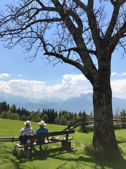 Tree Grass Togetherness Field Day Two People Men Nature Sky Leisure Activity Real People Mature Men Growth Full Length Outdoors Beauty In Nature Lifestyles Sitting Women People Salzburg, Austria Gaisberg Austria Salzburger Land