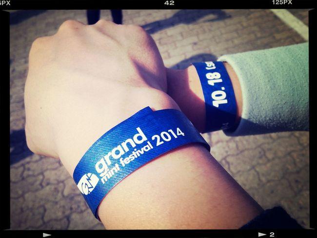 Festival 올해도 함께♥ 잘 부탁드립니다!