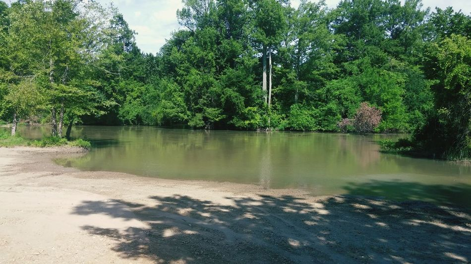 Hidden Gems  River Fishing Nature River Bank  Hanging Out
