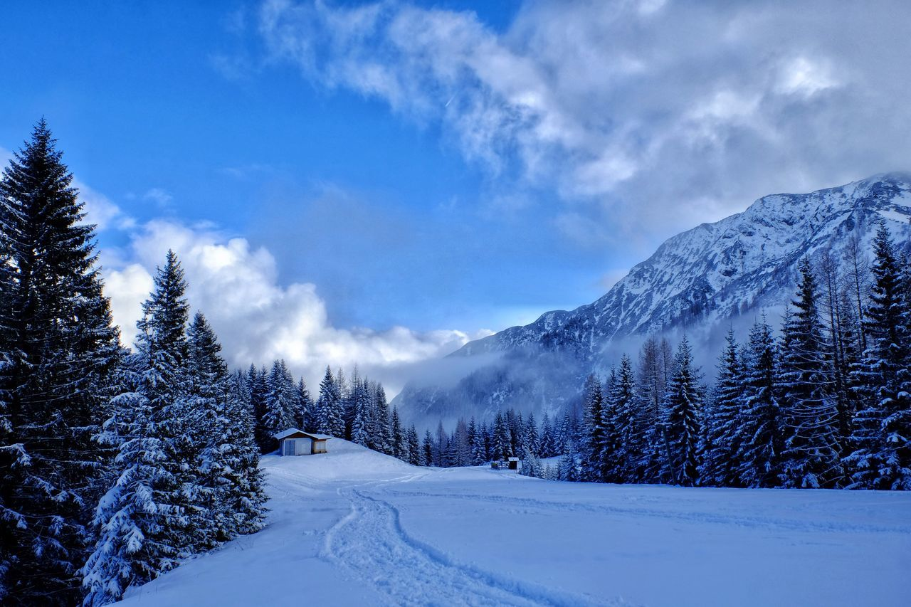 Beautiful stock photos of danke, Beauty In Nature, Blue, Cold Temperature, Covered