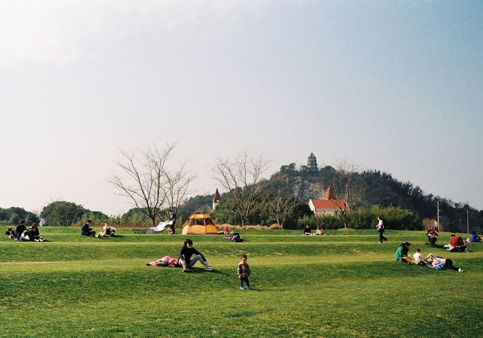 Sunny day of Shanghai Grass Real People Lifestyles Tree Large Group Of People Nature Park Beauty In Nature Leicacamera Film Leica M6 Urban Exploration From My Point Of View Exceptional Photographs City Life A Group Of People City Enjoying The Sun Enjoying Life Shanghailife