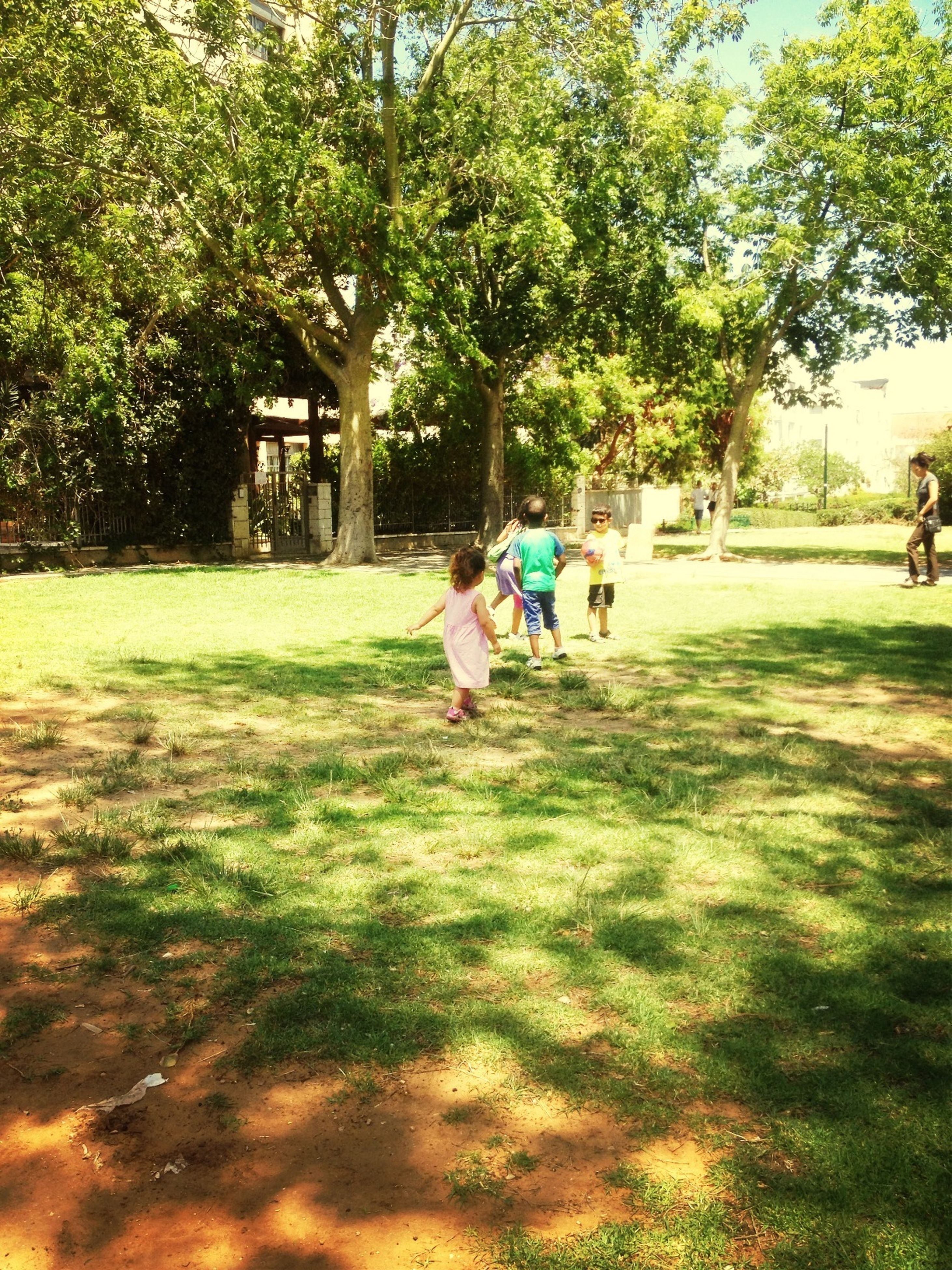 grass, lifestyles, leisure activity, tree, park - man made space, green color, men, childhood, togetherness, person, full length, boys, playing, girls, bonding, walking, growth, field