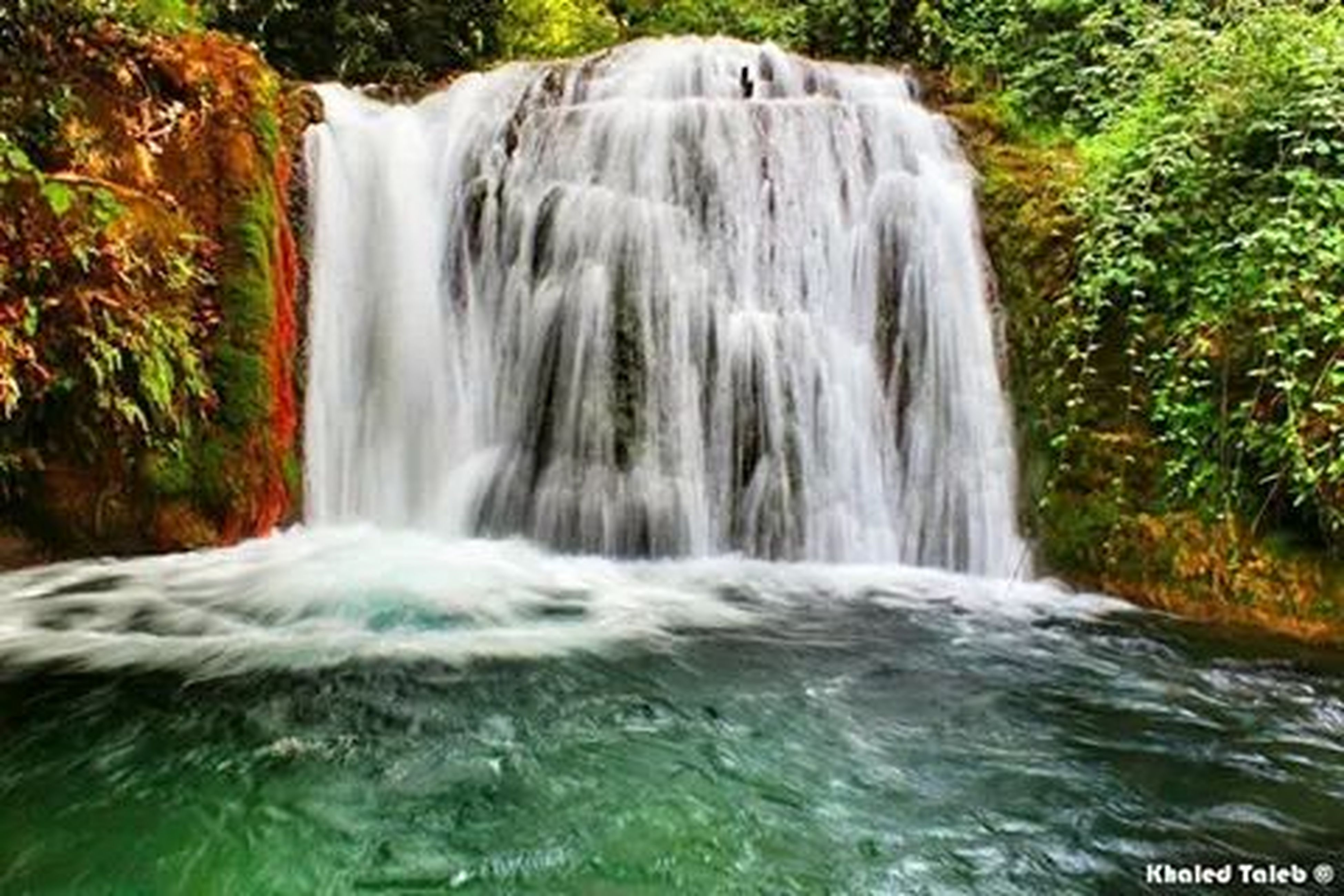 waterfall, motion, water, flowing water, long exposure, flowing, blurred motion, beauty in nature, splashing, nature, scenics, forest, waterfront, tree, power in nature, surf, environment, rock - object, idyllic, day