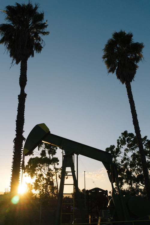 Sun sets on oil well in California. What is next for energy in the sun soaked state and how can sustainable energy play a bigger role? Cali California Dusk Environment Environmental Awareness Environmental Issues Fragility Not In My Back Yard Not In My Name Oil Palm Palm Tree Silhouette Sunflare Sunset Sustainability