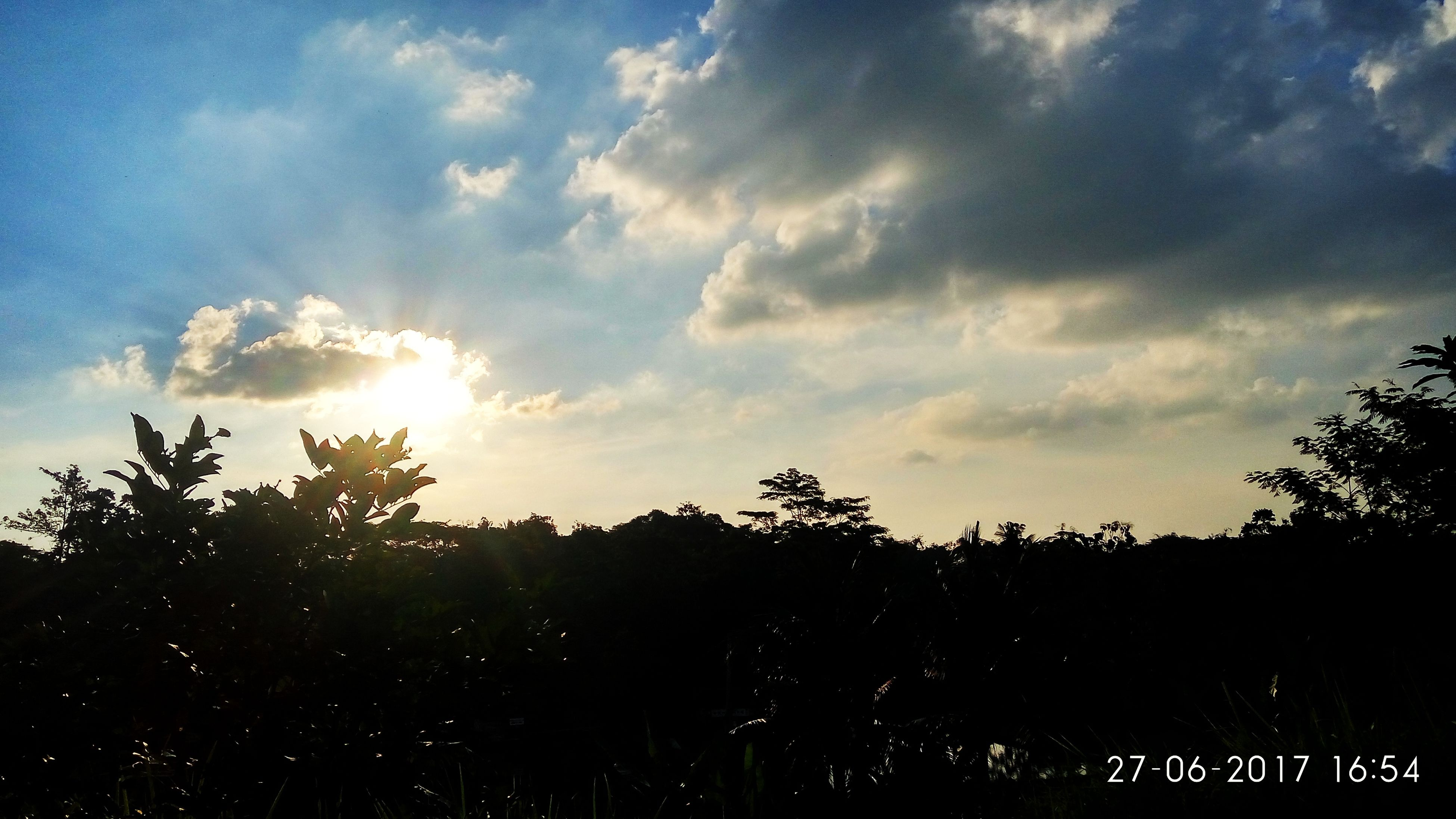 nature, sky, tree, sunset, silhouette, tranquility, beauty in nature, scenics, landscape, no people, sunshine, outdoors, day