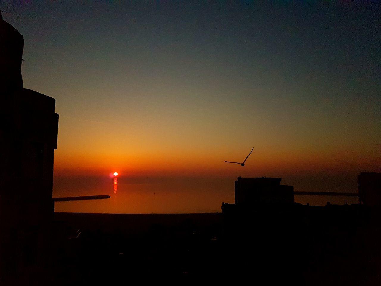No Filter Sky Sunrire Sunshine Sun Sunshine ☀ Sea Bird Noedit Taking Photos Perfectview