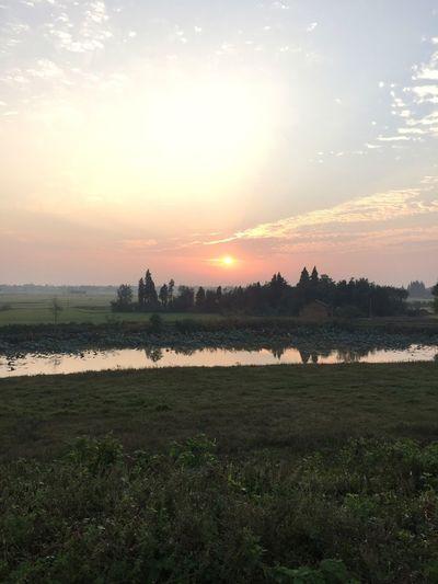 早晨的第N束阳光