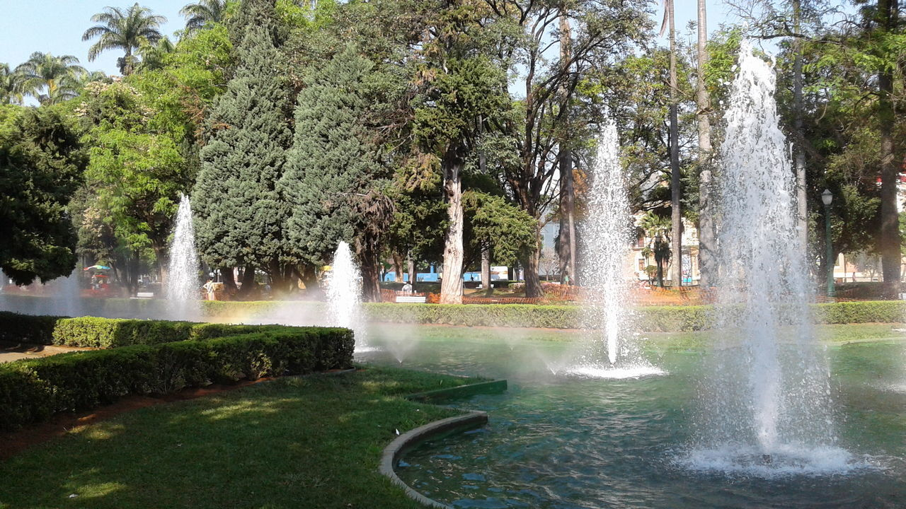 water, fountain, spraying, motion, tree, splashing, waterfall, long exposure, growth, sprinkler, outdoors, nature, drinking fountain, day, water park, beauty in nature, swimming pool, grass, irrigation equipment, no people, scenics, hot spring, water slide, sky