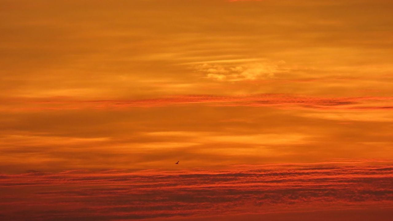sunset, orange color, scenics, beauty in nature, nature, dramatic sky, cloud - sky, sky, no people, red, outdoors, tranquility, yellow, day