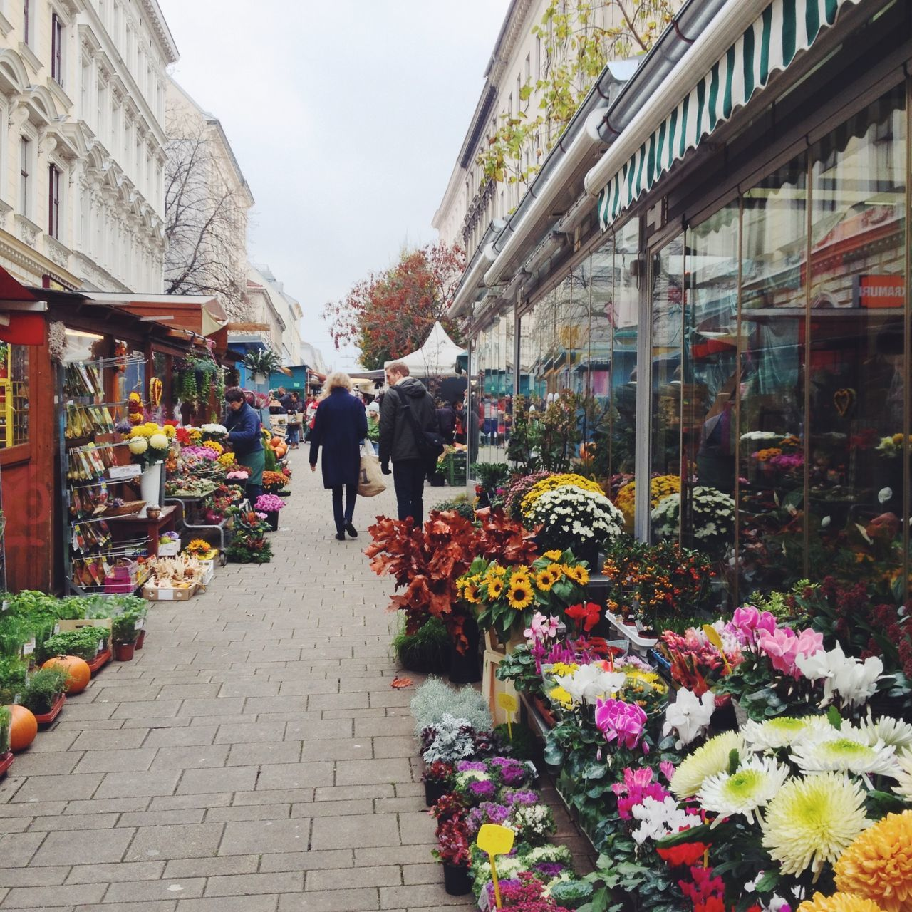 A beautiful walk through a Farmers Market in Vienna, Austria Austria City City Street Day Farmers Market Flower Flower Market Flower Shop Lifestyles Market Outdoors Real People Street Street Photography Travel Destinations Vienna