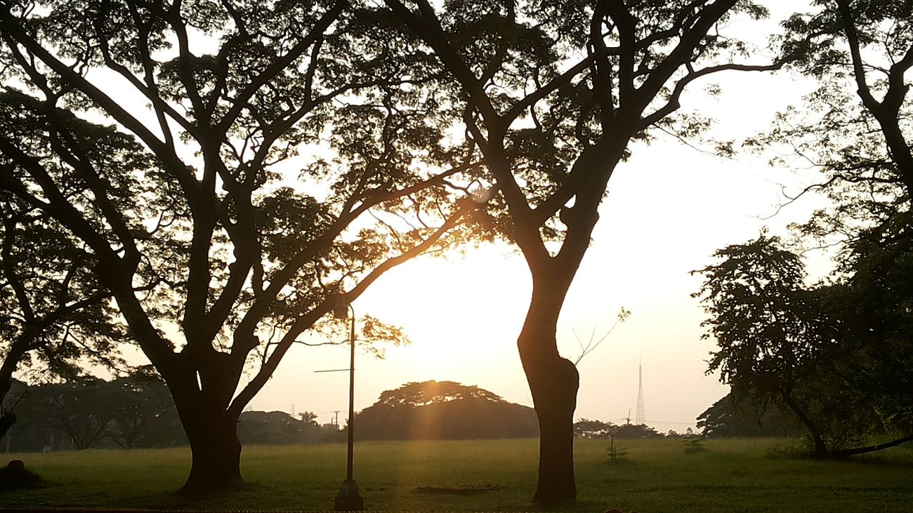 sunset at UP Diliman