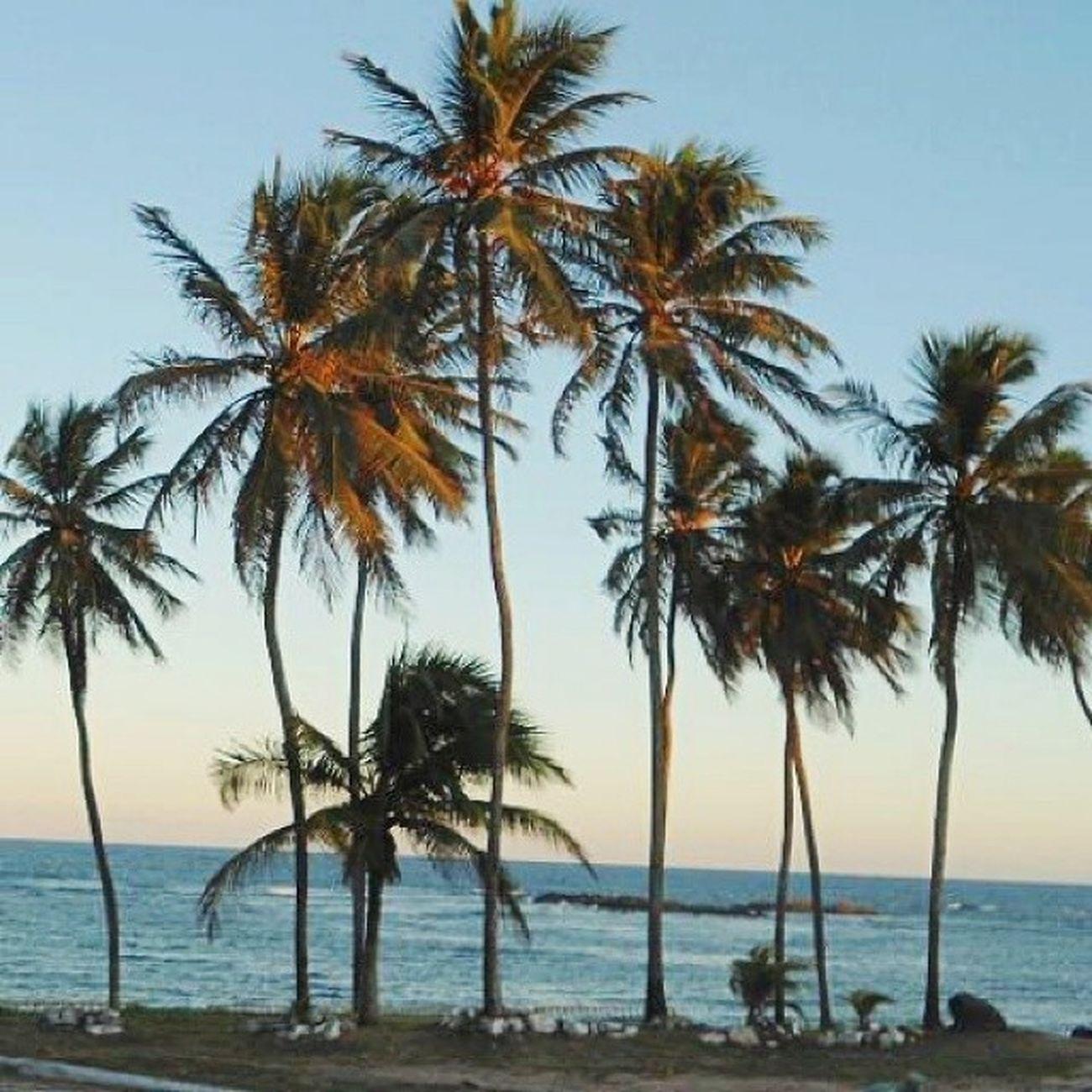 """"""" As ondas beijam os lábios da praia Bocas do mar """" Bomdia Ssa Mar Semfiltro"""