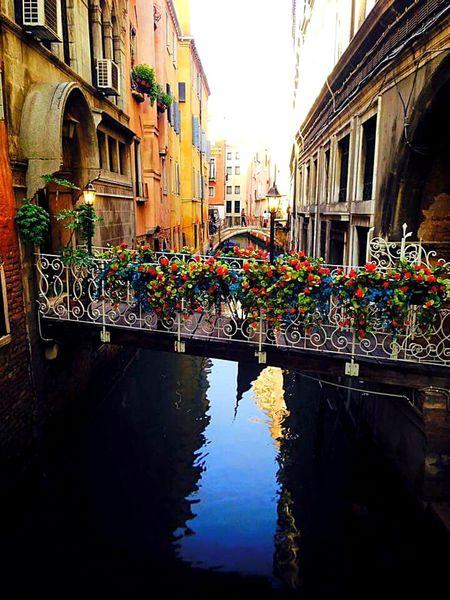 Hello World Venice, Italy Travel Photography Beautiful