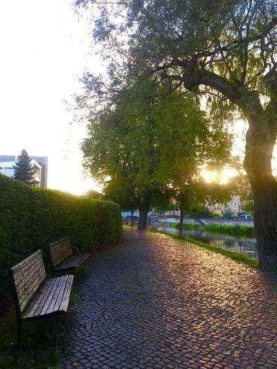Tuttlingen Tuttlingen Schwäbischealb Donau
