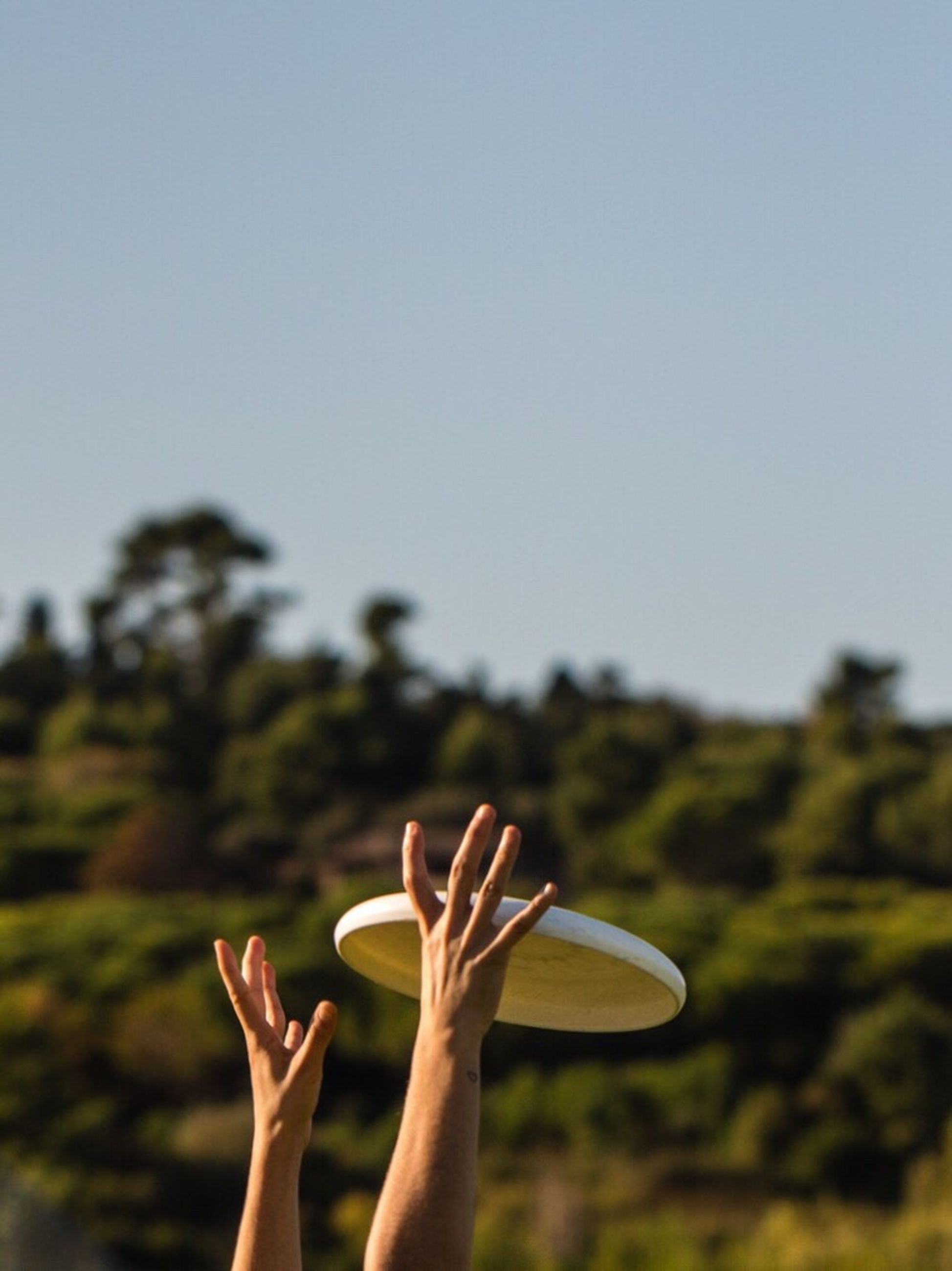person, part of, cropped, focus on foreground, holding, lifestyles, leisure activity, human finger, clear sky, personal perspective, gesturing, day, outdoors, tranquility, green, tranquil scene, human skin, beauty in nature