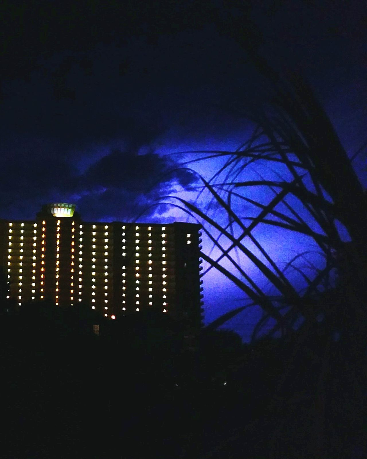 Night Beauty In Nature Nature Outdoors Lightning Storm