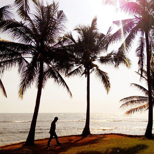 Pantai Anyer  Banten INDONESIA Beach Coconut Coconuttrees Alone Fatamorphosis Lenovotography Photooftheday Photophone  Lzybstrd Pocketphotography